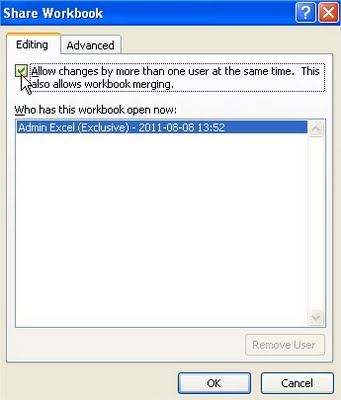 Share Workbook dialog box allow changes