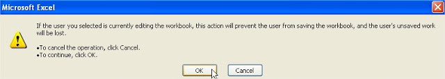 share workbook remove user